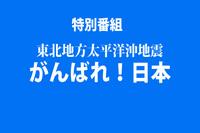 20110311b.jpg